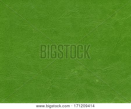 Green leather texture. Abstract Background and texture.