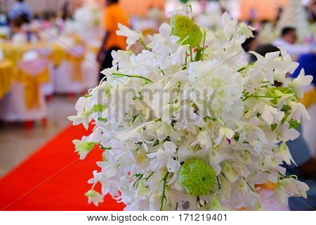 White orchid flowers decorative for wedding flowers for wedding party