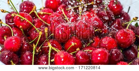 Freezed drops of water over the ripe cherries rinsed with water banner background