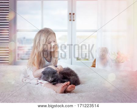 Sleepy baby and the cat on the bed. Good morning the light from the window a glorious awakening