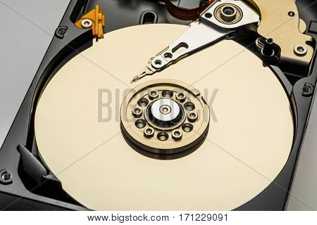 disassembled computer hard disk in gold color closeup isolated