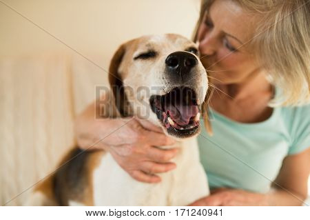 Beautiful senior woman with her dog at home sitting on couch, relaxing, giving him a kiss