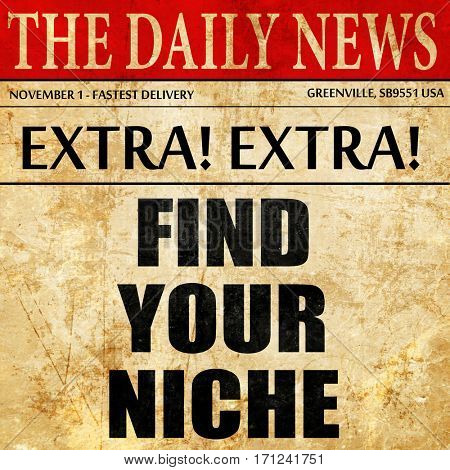 find your niche, article text in newspaper