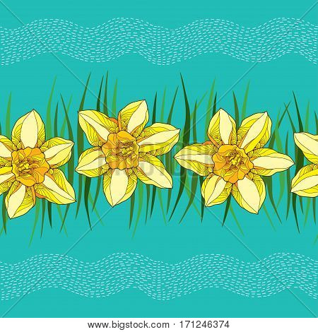 Vector seamless pattern with outline narcissus or daffodil in yellow and green leaves on the turquoise background with stripes. Floral background with narcissus for spring design in contour style.