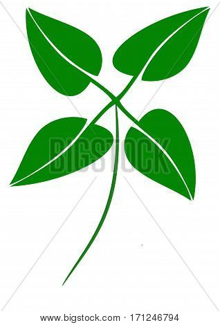 Commercial green cloverleaf logo on a white background