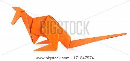 Orange kangaroo of origami. Isolated on white background