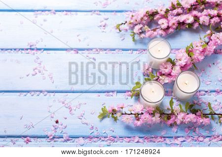 Background with sakura pink flowers and candles on blue wooden planks. Selective focus. Place for text.