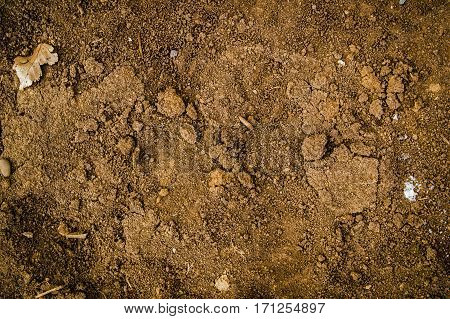 Soil, texture of the soil, soil texture, nature background, ground