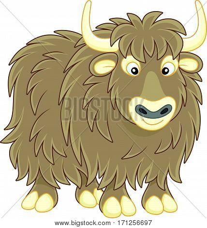 Vector illustration of a big brown yak bull in cartoon style