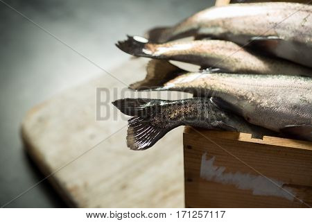 Tail Fins Of Fresh Rainbow Trout In A Wooden Crate