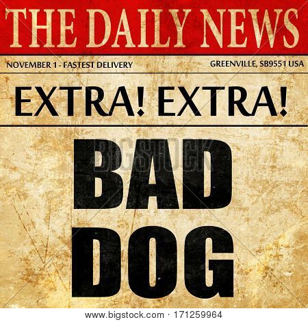 bad dog, article text in newspaper