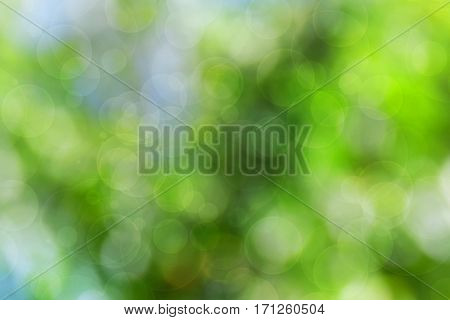 Abstract blurred background with bokeh. Spring . Summer. Celebration. The bright colors of life. Positive paint. Magic.
