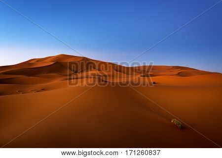 View of the dunes at dawn in Erg Chebbi near Merzouga in Morocco North Africa; Concept for travel in Morocco