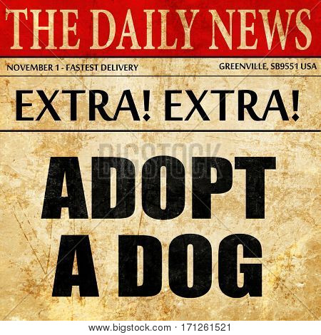 adopt a dog, article text in newspaper