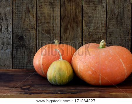 Ripe Pumpkin On Wooden Background. Rustic Photo