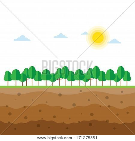 soil profile and soil horizons piece of land with green trees