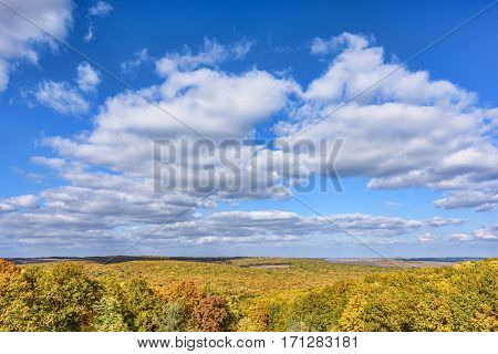 Scenic landscape with golden forest in autumn, blue sky and white clouds, sunny day in Moldova