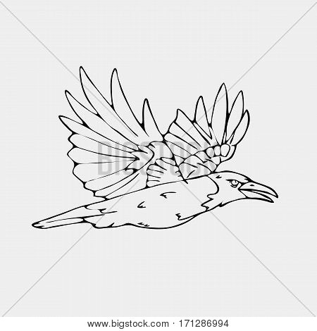 Hand-drawn pencil graphics,small bird, jackdaw, magpie, bird, blackbird,  crow, raven. Engraving, stencil style. Black and white logo, sign, emblem, symbol. Stamp, seal. Simple illustration. Sketch.