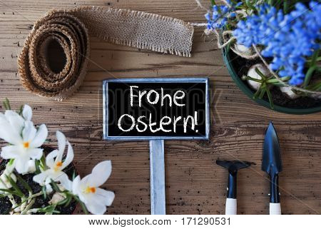 Sign With German Text Frohe Ostern Means Happy Easter. Spring Flowers Like Grape Hyacinth And Crocus. Gardening Tools Like Rake And Shovel. Hemp Fabric Ribbon. Aged Wooden Background