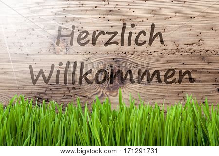 German Text Herzlich Willkommen Means Welcome. Spring Season Greeting Card. Bright, Sunny And Aged Wooden Background With Gras.