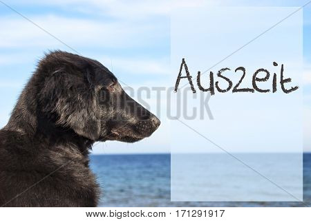 German Text Auszeit Means Downtime. Flat Coated Retriever Dog Infront Of Ocean. Water In The Background