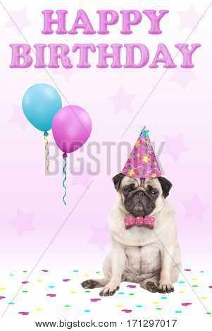 cute grumpy faced pug puppy dog with party hat balloons confetti and text happy birthday on pink background