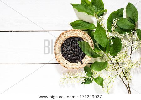 Medicinal plant bird cherry (Prunus padus). Flowering branches and dried berries in a wicker bowl on a white wooden table. Top view