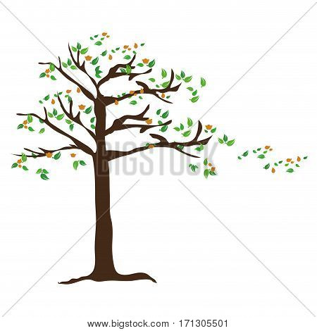 colorful leafy tree plant with leaves Falling vector illustration