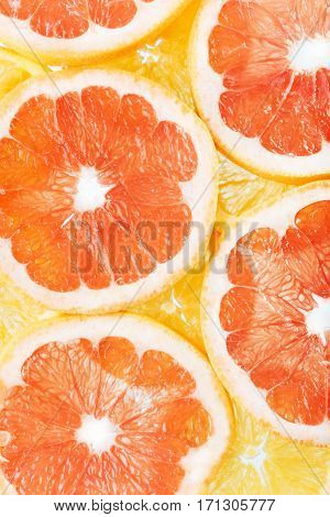 background of citrus fruits oranges and grapefruit slices. Studio photography.