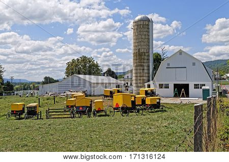 BELLEVILLE PENNSYLVANIA - September 3 2016: A group of Amish youth paint all the farm buildings in one day at Mifflin County Pennsylvania USA.