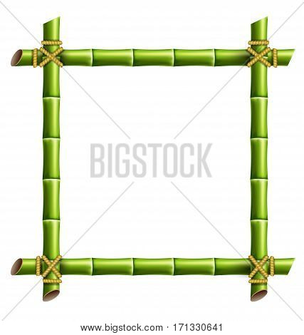 Green bamboo frame isolated on white background