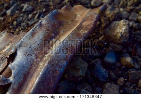 A rusted piece of scrap metal laying upon gravel and dirt.