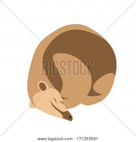 anteater vector illustration style Flat side profile
