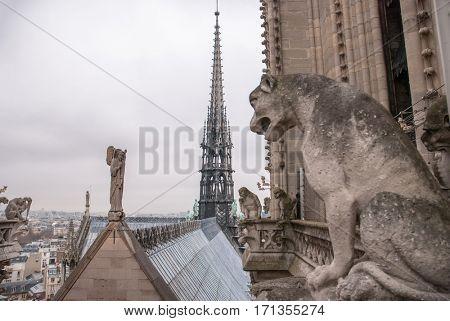 Chimera of the Cathedral Notre Dame de Paris