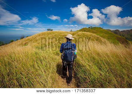 Traveler On Pathway