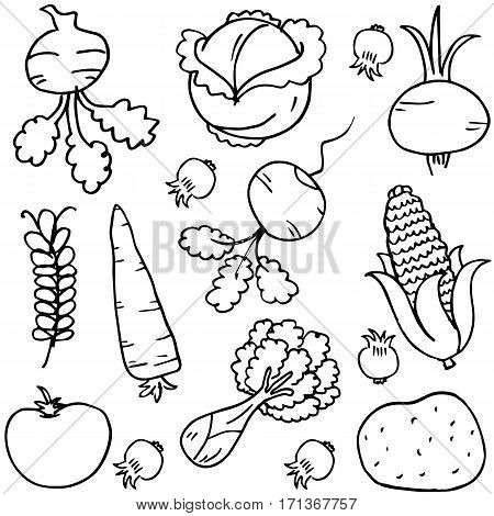 Illustration vector of vegetables doodles collection stock