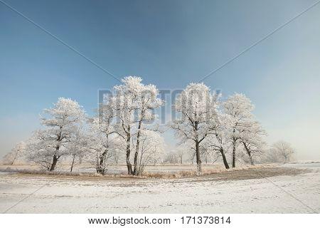 Winter landscape at sunrise. . . Poland