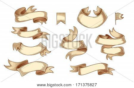 Set of colored ribbons isolated on white background. Vector illustration of vintage engraving ribbon tapes for menu, poster, web and label. Hand drawn in a graphic style.