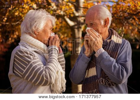 Senior couple using tissues in a park