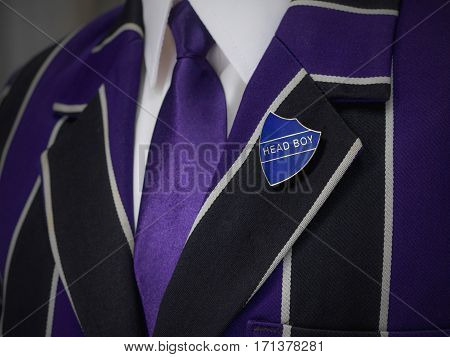 School striped boys blazer with school badge and purple tie