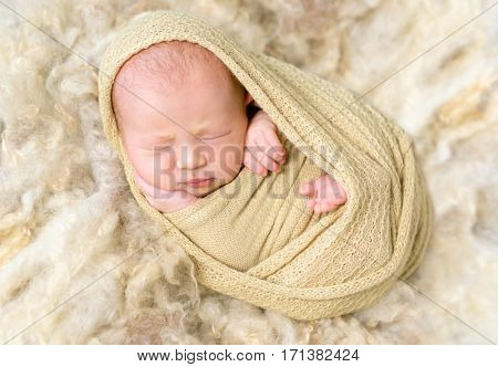 Little infant enveloped tightly with a warm blanket, resting on a furry surface, closeup