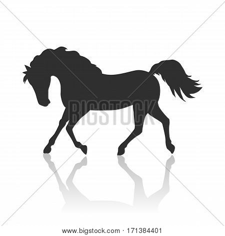 Running black horse flat style vector. Domestic animal. Country inhabitants concept. Illustration for farming, animal husbandry, horse sport companies. Agricultural species. Isolated on white