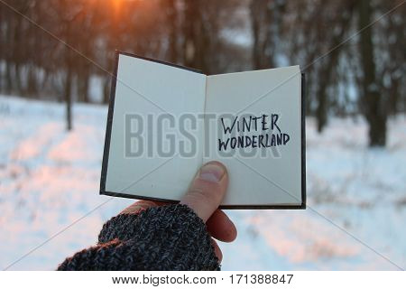 Winter wonderland. Hand holding a book with the inscription.