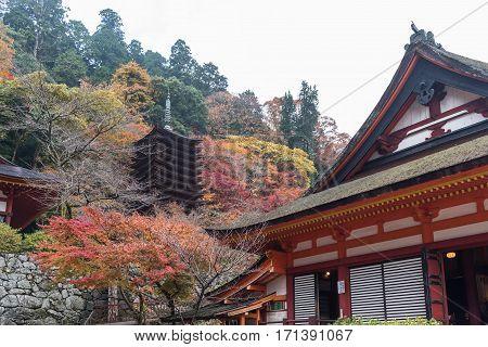Pagoda at Tanzan Shrine in autumn Nara Prefecture Japan