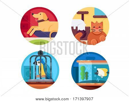 Pets set. Cat and dog, parrot and fish. Vector illustration. Pixel perfect icons size - 128 px