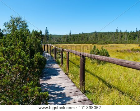 Peat bog with wooden path near Jizerka village in Jizera Mountains, Northern Bohemia, Czech Republic, Europe.