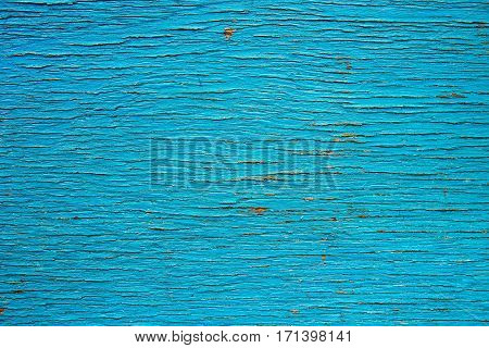 Rustic dark blue painted wood texture as background.