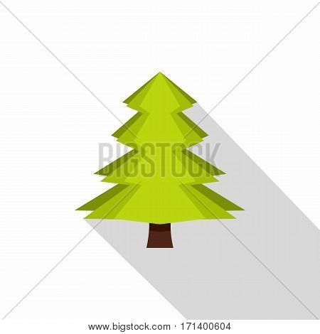 Canadian fir icon. Flat illustration of canadian fir vector icon for web isolated on white background