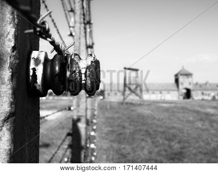 Detailed view of barb wire fence in concentration camp. Auschwitz Birkenau, aka Oswiecim Brzezinka, Poland, Europe.