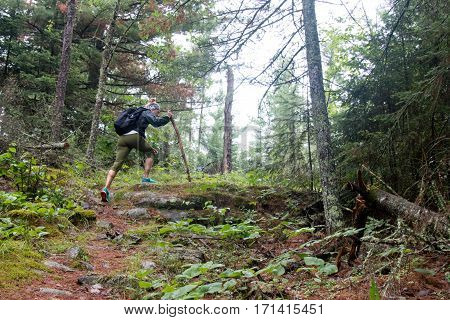 Woman Hiking through the Forest on a Trail